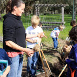 School gardens take root