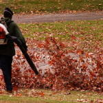 Reflections on leaf blowers