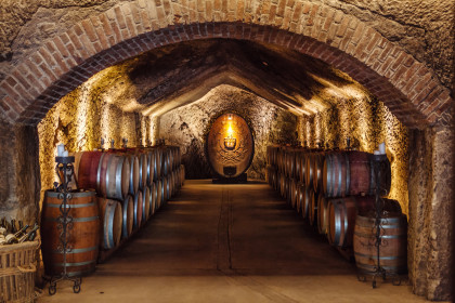 The historic, and recently renovated, Champagne Cellars at Buena Vista (Image: Scott Chebegia)