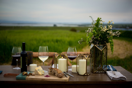 A picnic by San Pablo Bay is one of the many offerings at the new Liana Estates in Carneros (Photo: Michelle Walker)