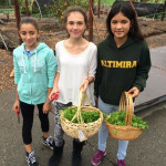 District's 'farm to school to student' food program