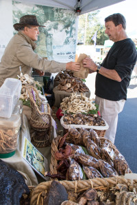 11:00am Buying mushrooms at the Farmer's Market.