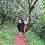 Community Gratitude Hike at Sonoma Overlook Trail
