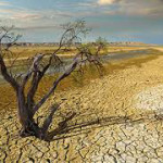 Drought Forecast