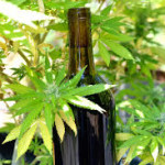 Weed and wine: unlikely bedfellows face similar scrutiny
