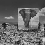 The epic, wrenching photography of Nick Brandt