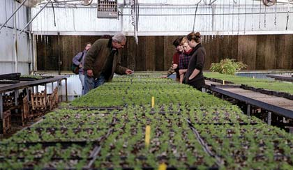 photo by Andrea Guido. Bob Cannard Jr. (left) walks through the greenhouse with interns.